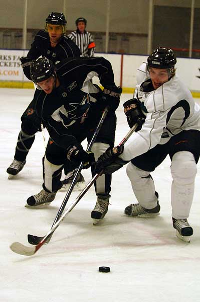 San Jose Sharks training camp