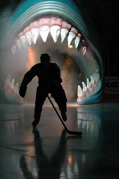 San Jose Sharks, NHL Hockey Photos by Jon Swenson