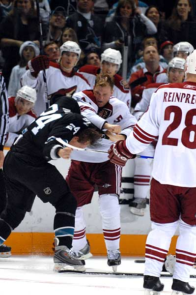 San Jose left wing hockey fight Phoenix Coyotes Todd Fedoruk