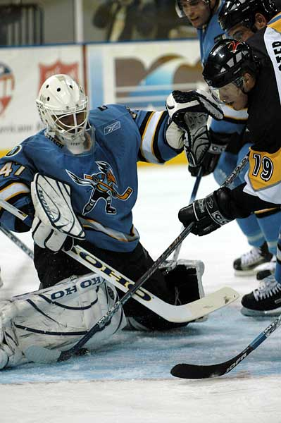 San Jose Sharks affiliation with ECHL Phoenix Roadrunners