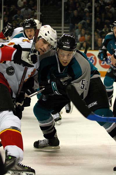 San Jose Sharks Calgary Flames hockey