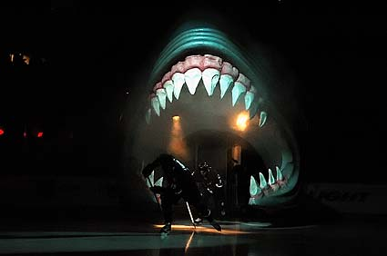San Jose Shark head