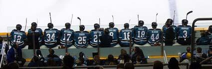 San Jose Sharks flickr hockey photo