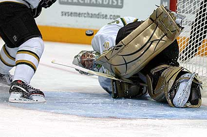 Dallas Stars goaltender Marty Turco