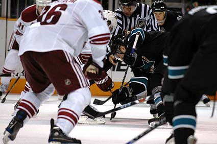 San Jose Sharks center Joe Pavelski faceoff photo