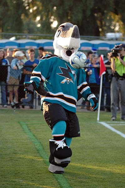 San Jose Sharks Earthquakes soccer