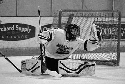 ACHA D2 National Tournament in San Jose Michigan State vs Montclair State college hockey