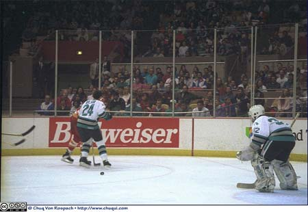 San Jose Sharks captain Doug Wilson and goaltender Arturs Irbe on NHL ice at the Cow Palace