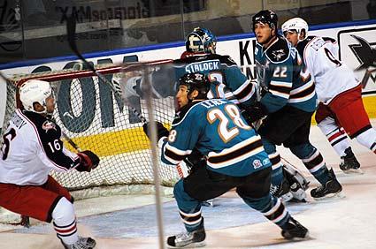 Worcester Sharks AHL Springfield Falcons